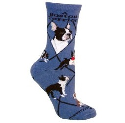 boston terrier socks argyle
