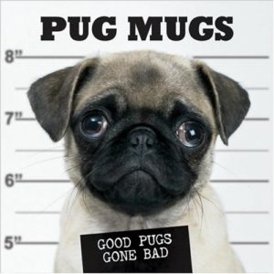 pug mug book good dogs gone bad