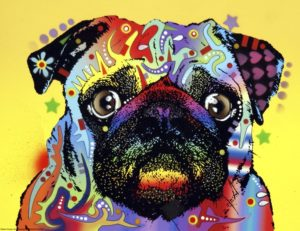 abstract color dog pug arts