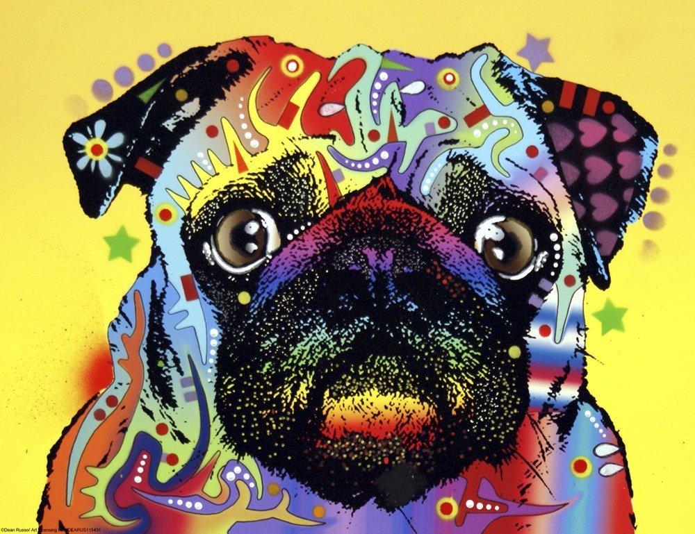 abstract color dog pug arts