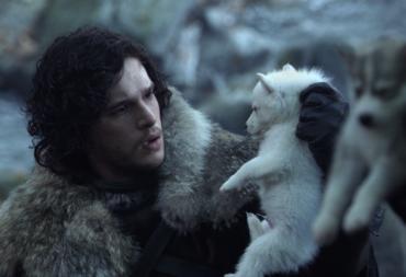 dire wolf jon snow
