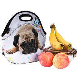 dog lunchbox neoprene bag