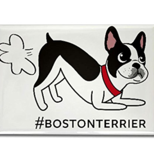 Boston Terrier fart magnet refrigerator cute bostonterrier