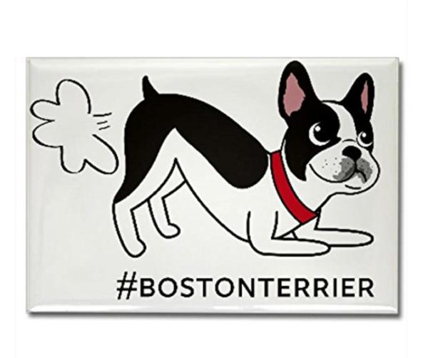 Boston Terrier fart magnet refrigerator cute bostonterrier