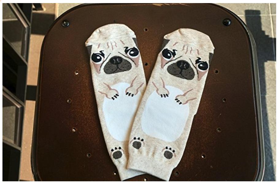 pug dog socks - face