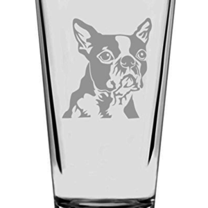Dog drinking glass beer boston terrier