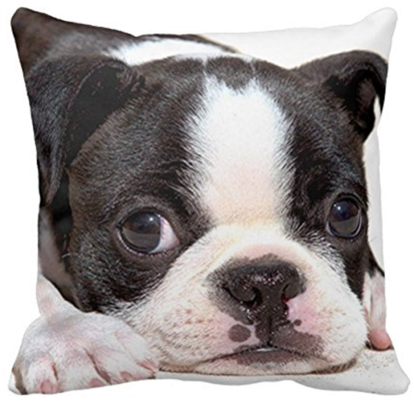 puppy throw pillow sofa